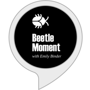 Amazon Alexa Skill Beetle Moment Marketing Podcast